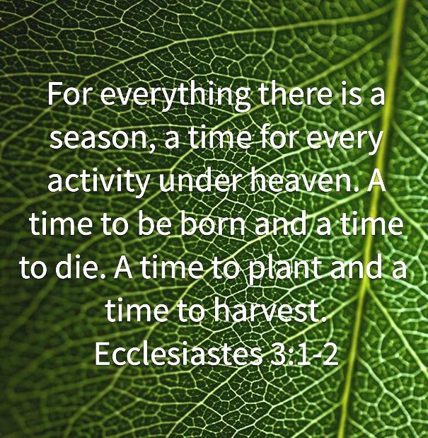 Ecclesiastes3cropped2
